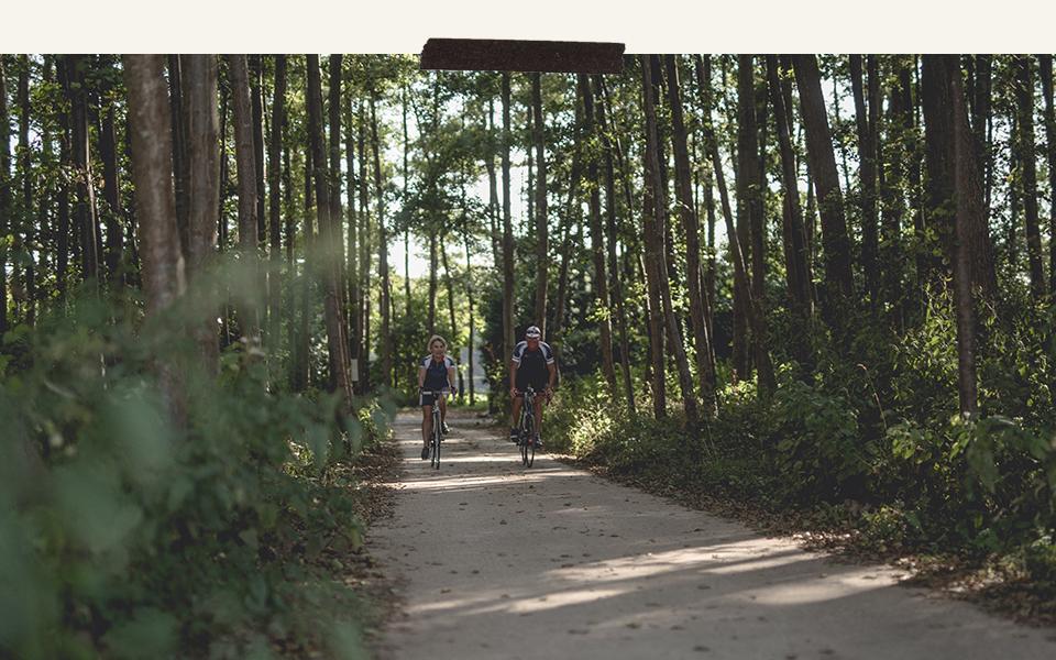 bike the barn